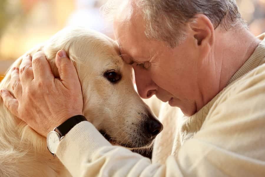 Senior man and big dog closeup