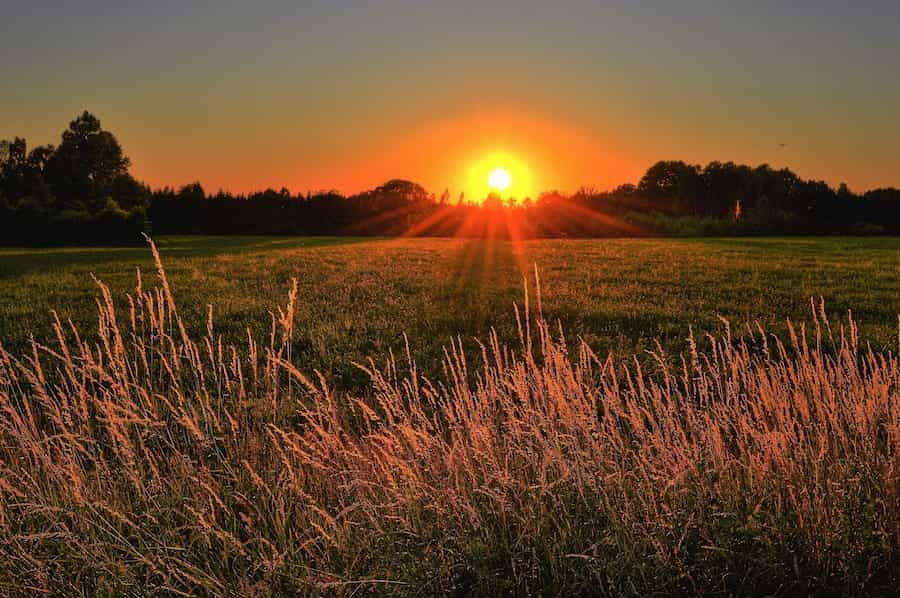 sunset over a lush green landscape